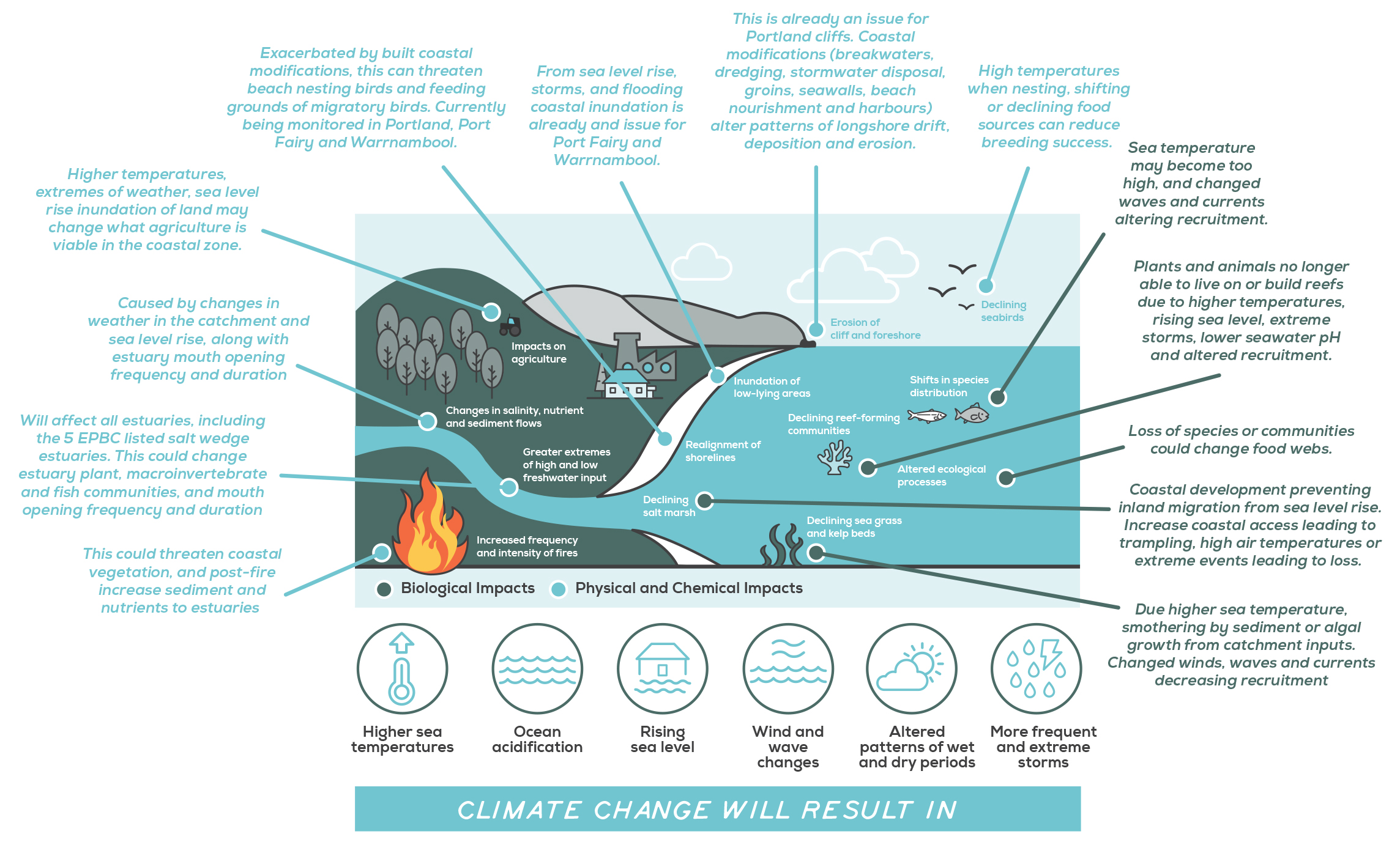Diagram presenting the impacts of climate change on the marine and coastal environment.